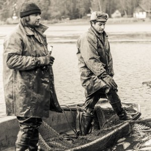Výlov rybníka Drahotín 0036